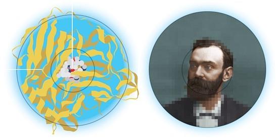 نوبل شیمی 2013