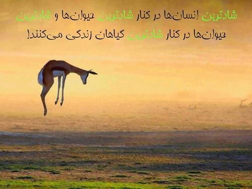 شادی انسان ها در گرو شادی طبیعت است ...