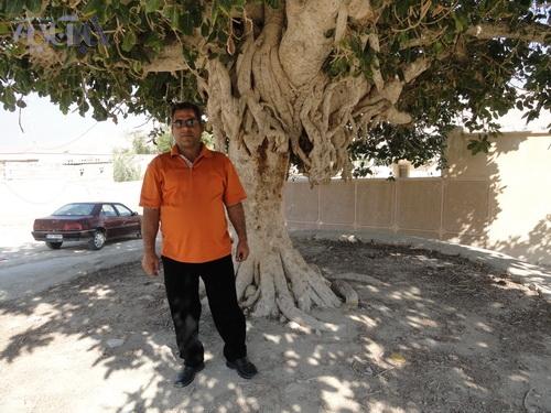 ناصر احمدیان در کنار درختی که نجاتش داد ...