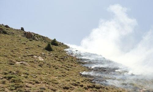 آتش سوزی در رینه