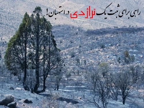 آتشی که به جان رویشگاه اُرس در استهبان افتاد - 27 تیر 1392