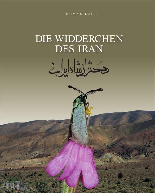 روی جلد کتاب دختران شاه ایرانی