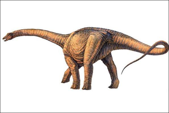 دایناسور 77 تنی