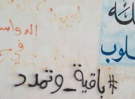 داعش امارت اسلامی عراق و شام ,عربستان