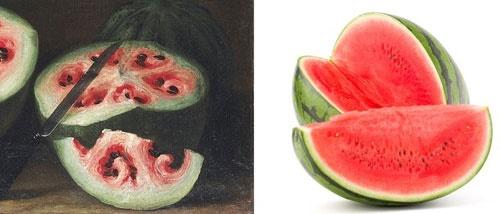 16 2 1 20263916 2 1 112357watermelonthenandnow - هندوانه و موز قبلا چه شکلی بودند؟/تصاویری که شاید باورتان نشود