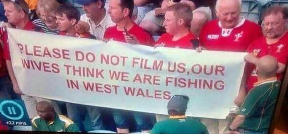 هواداران ولز