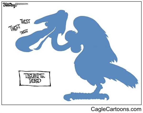 این هم پرنده بانفوذ ترامپ!