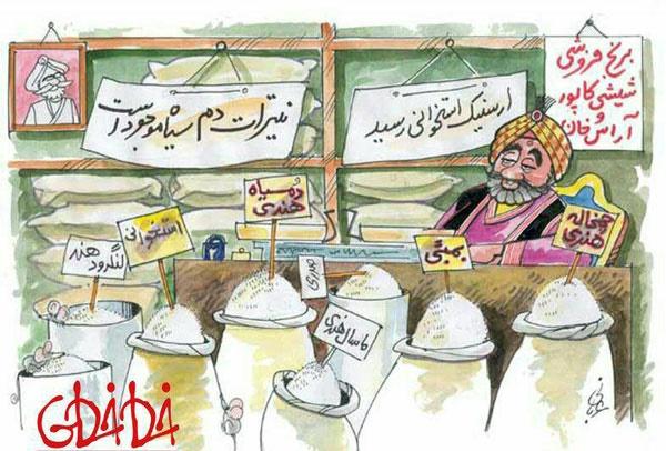 واردات برنج,برنج,کاریکاتور