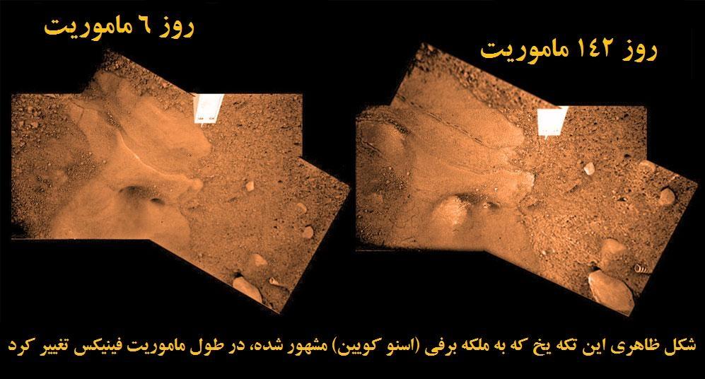 حیات در مریخ