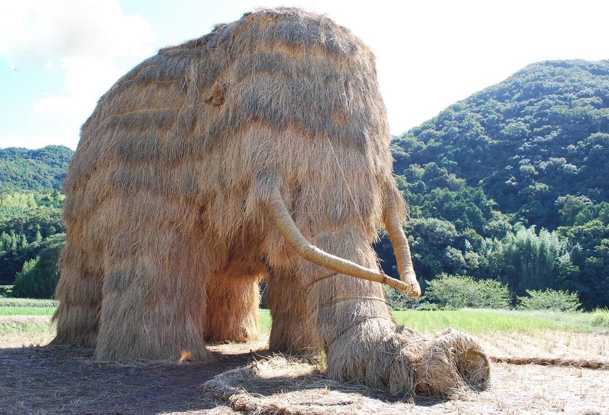 کشاورز هم کشاورزان ژاپنی، آنهم از نوع هنرمندش