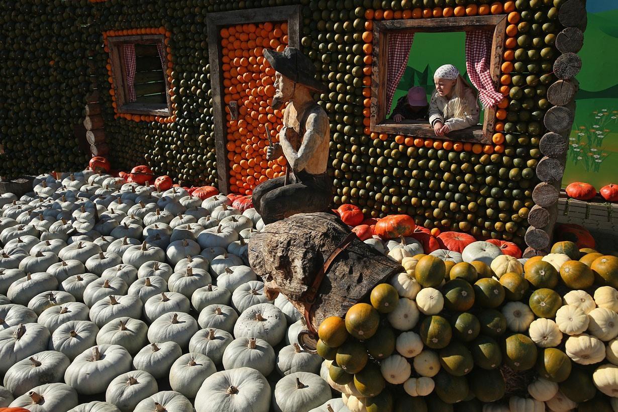 تصاویری از 80 نوع کدو در جشنواره محلی در آلمان