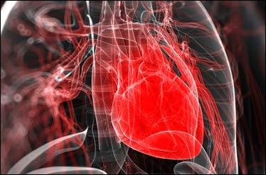درمان گرفتگی عروق قلب با داروی گیاهی ایرانی و بدون جراحی