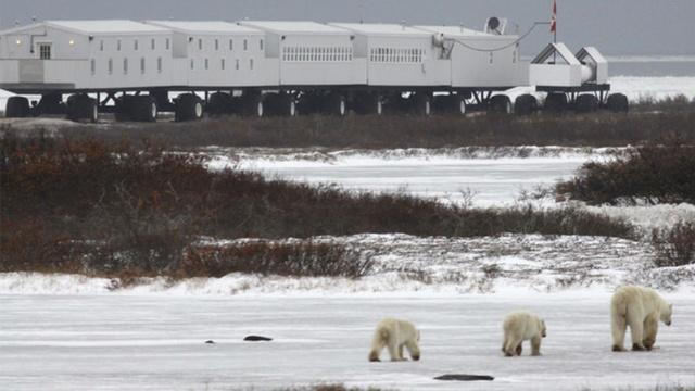 بهترین تصاویر علمی هفته: از خورشید رنگینکمانی تا هتل خرس قطبی