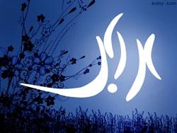 به چه دلیلی تاریخ ولادت حضرت علی اکبر(س) به صورت قطعی در 11 شعبان تعیین شده است؟