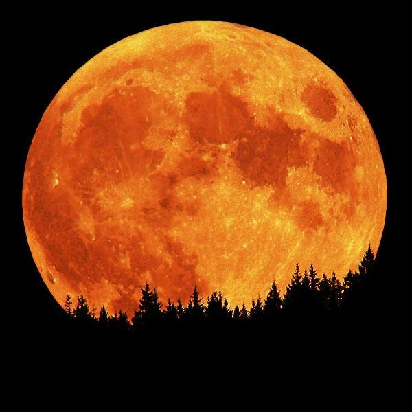 امشب تماشای بزرگترین ماه بدر سال را از دست ندهید