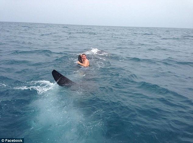 لحظه ای که جوان 19 ساله روی کول نهنگ کوسه ای 22 هزار کیلویی رفت
