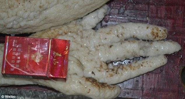 ماجرای مرد چینی که یک آدم فضایی را در یخچال خانه نگهداری می کرد