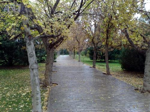 زیباترین پردیس ایران در تهران!