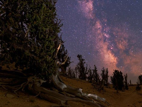این پدیده زمینی فقط از فضا دیده میشود