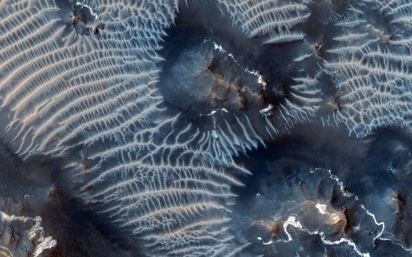 بهترین تصاویر فضایی هفته: از تلماسههای بادزده تا سحابی پنجه گربه