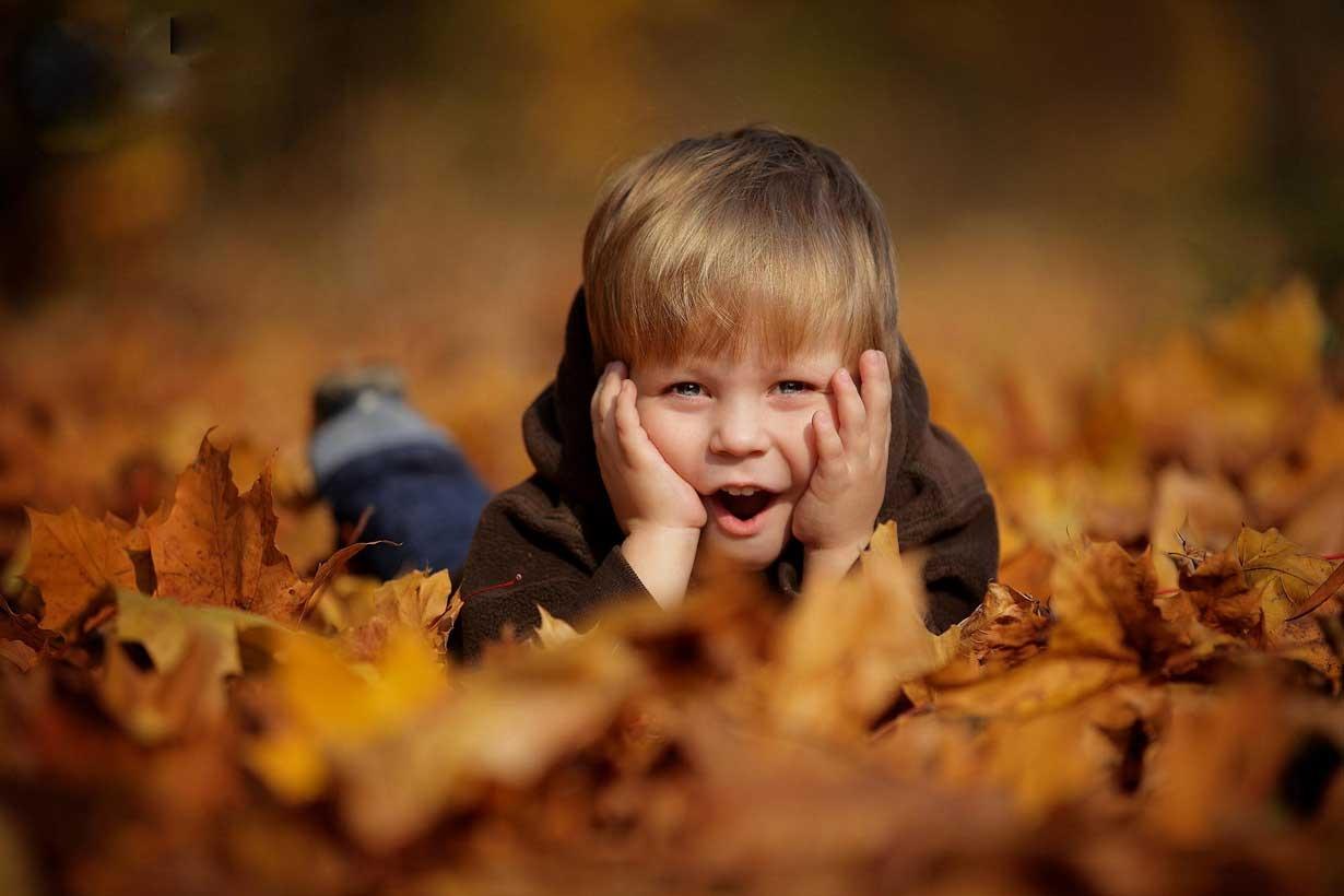 پاییز زودرس، پاییز رویایی
