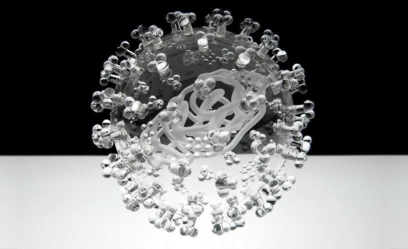 بهترین تصاویر علمی هفته: از ویروسهای شیشهای تا نقشه احساسات انسانی
