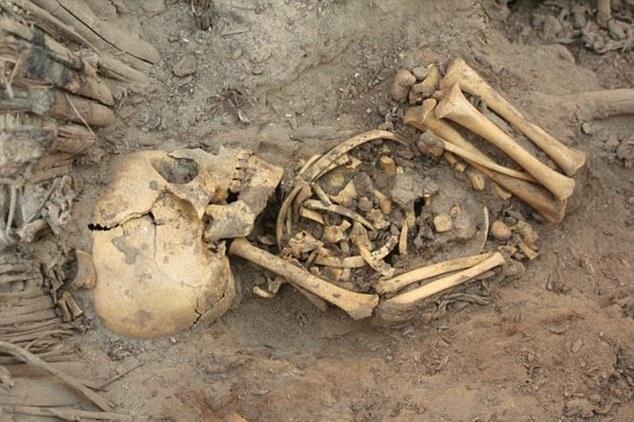 کشف اسکلتهای هزار ساله در پرو