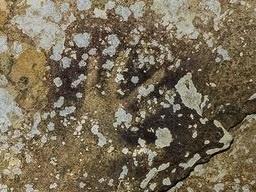 قدیمیترین نقاشی جهان به عمر 40,000 سال