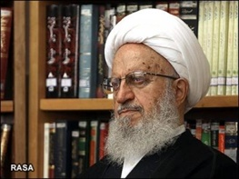محمدرضا مهدویکنی,آیت الله ناصر مکارم شیرازی