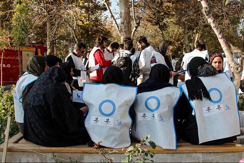 پیادهروی به مناسبت روز جهانی دیابت در مشهد/میزان ابتلا به دیابت در ایران  16درصد
