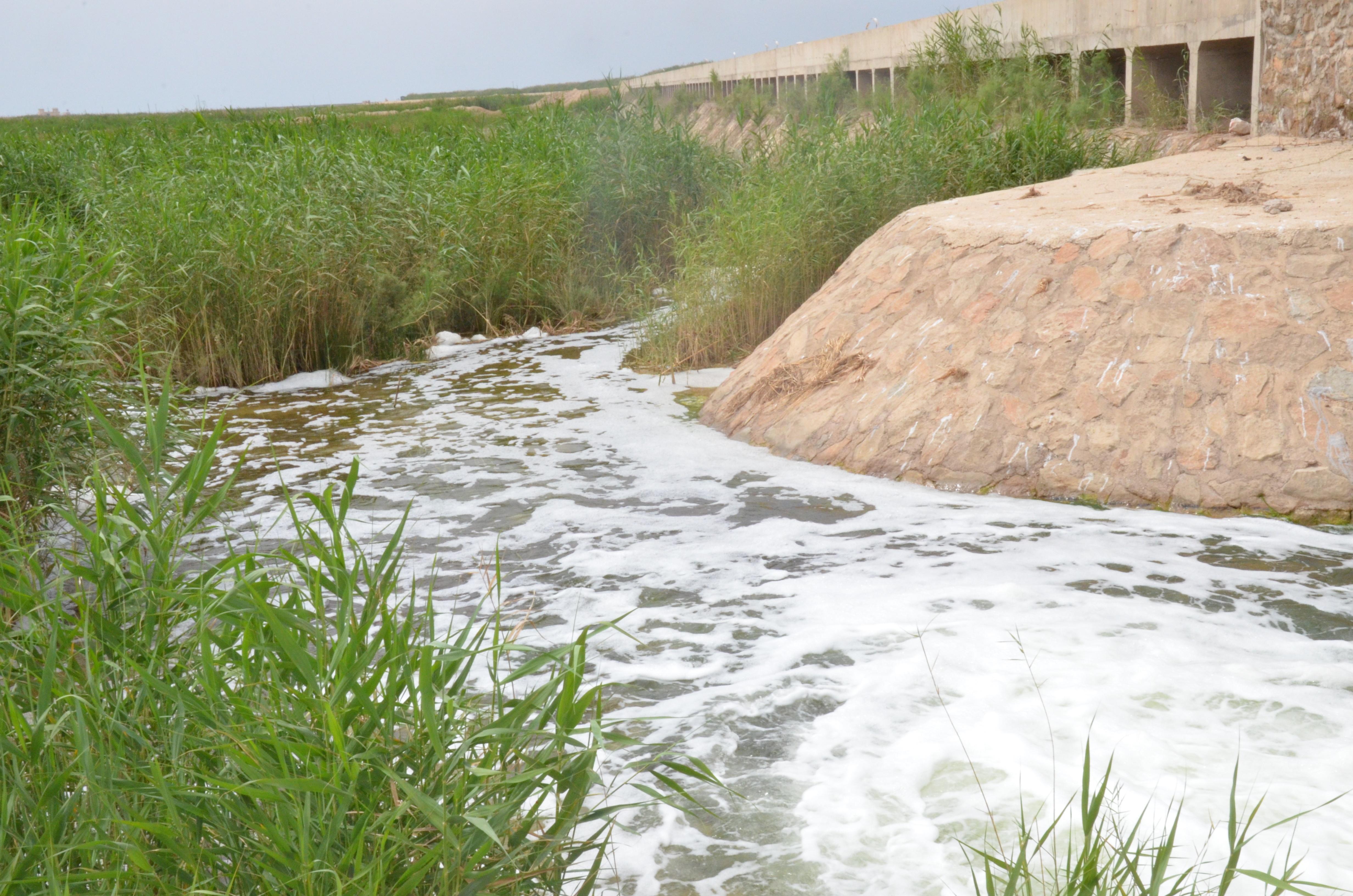 هورالعظیم پرآب شد تا گرد و خاک از خوزستان برود