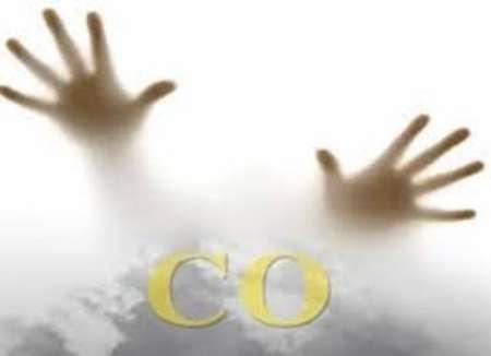 مرگ 247 ایرانی بر اثر مسمومیت با گاز منوکسیدکربن در 8ماه/ چگونه از مسمومیت با گاز پیشگیری کنیم؟