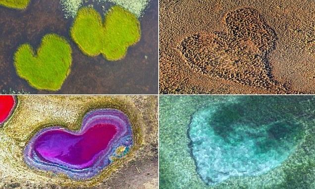 تصاویری از قلب های طبیعی دوست داشتنی از افریقا تا مکزیک