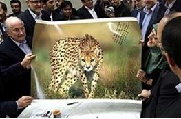رونمایی از نماد یوزپلنگ ایرانی در جامجهانی