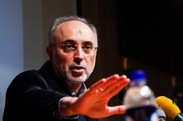 مذاکرات هسته ایران با 5 بعلاوه 1,علیاکبر صالحی,غنی سازی