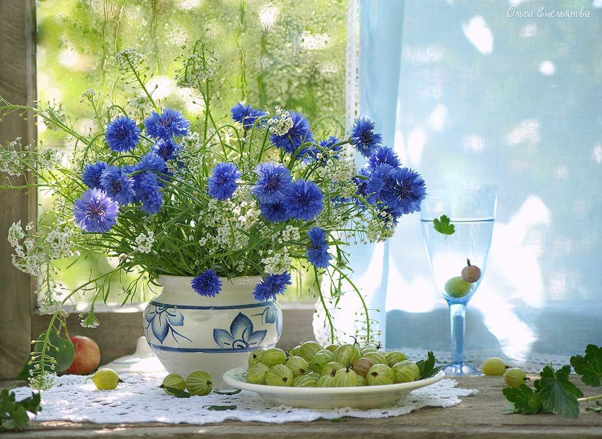 Натюрморты и цветы  На столе
