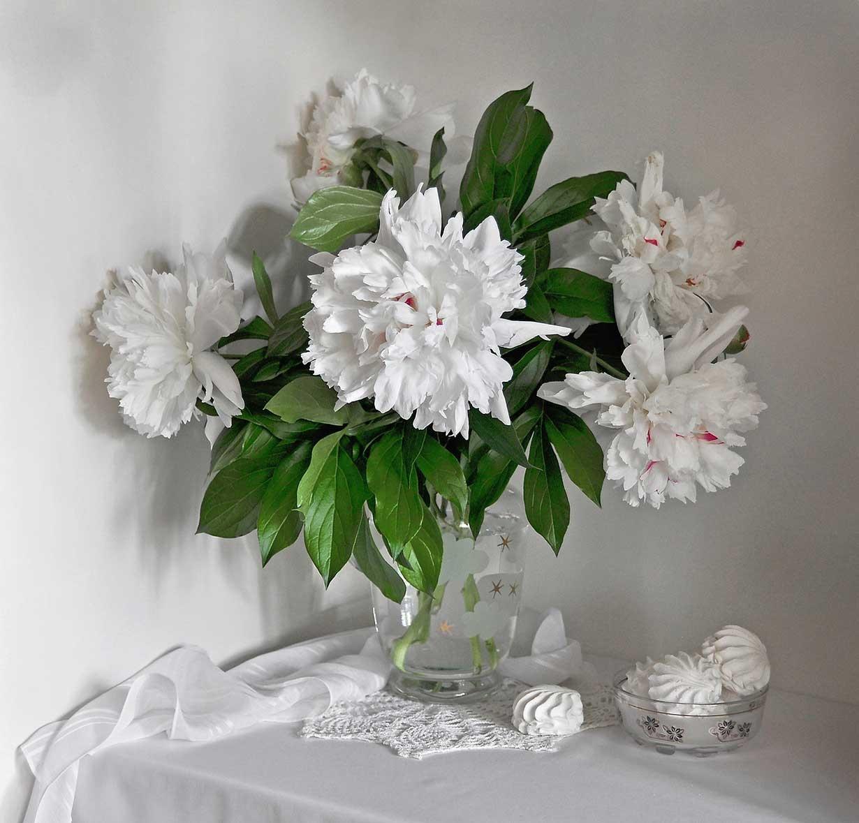 تصاویری از گل و گلدان های فوق العاده زیبا؛ ایده ای برای خانه شما در بهار