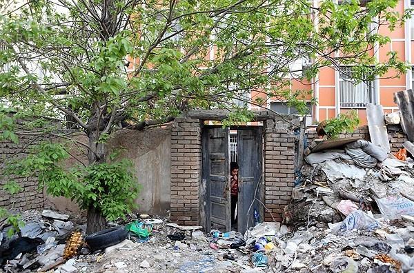زمین خواری و قطع درختان در حسن آباد