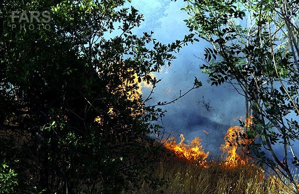 آتش سوزی در دامنه کوه آبیدر سنندج