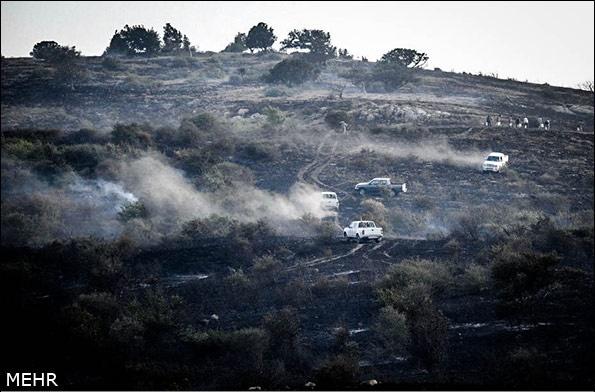 احتمال آتش سوزی عمدی در پارک ملی گلستان/ 400هکتار طعمه حریق شد