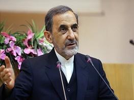 علی اکبر ولایتی,مذاکرات هسته ایران با 5 بعلاوه 1,هسته ای
