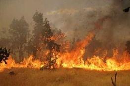 آتش سوزی میانکاله، آشوراده