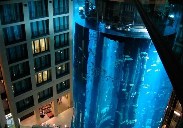 آسانسور در بزرگترین آکواریوم جهان