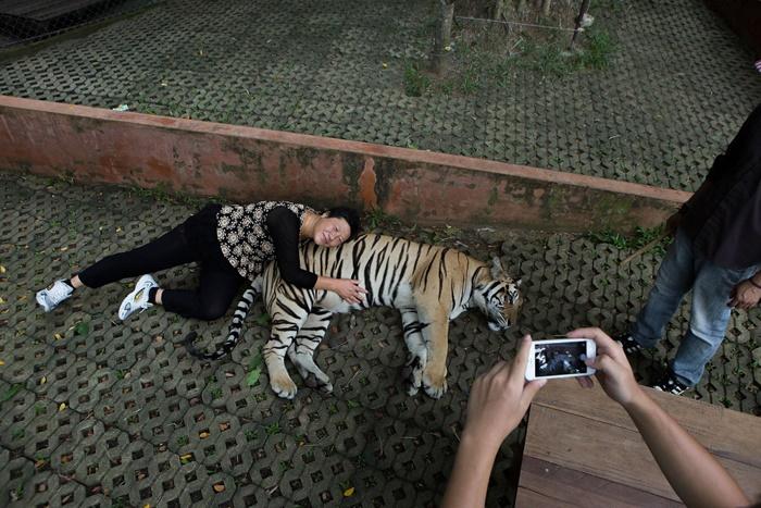 تصاویر عجیب و دیدنی از دنیای حیوانات