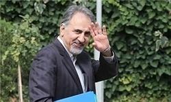 گزارش 100 روزه دولت یازدهم,محمدعلی نجفی,دولت یازدهم