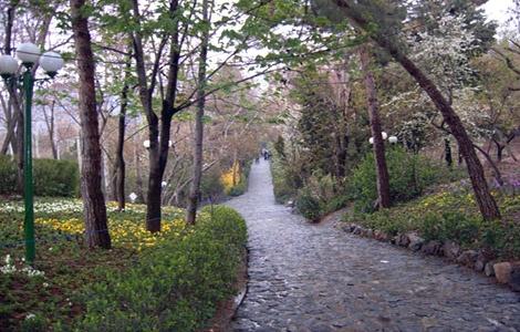 توقف ساختمان سازی در پارک جمشیدیه/ حقانی خبرداد: سرمایه گذاری خارجیها برای برج سازی درفضای سبز تهران