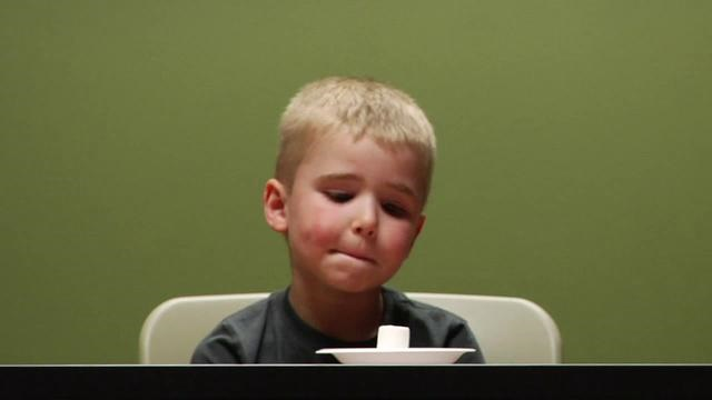 آزمایش روانشناختی مشهوری که موفقیت بچهها را در بزرگسالی پیشبینی میکند