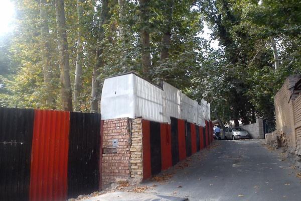 درختان باغ پسیان هم قطع شده اند