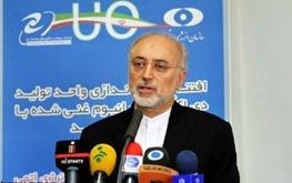علیاکبر صالحی,سازمان انرژی اتمی