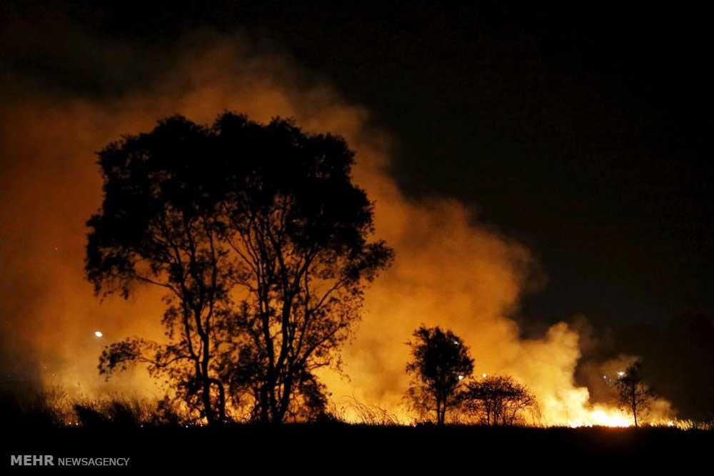 آتش سوزی در سوماترا